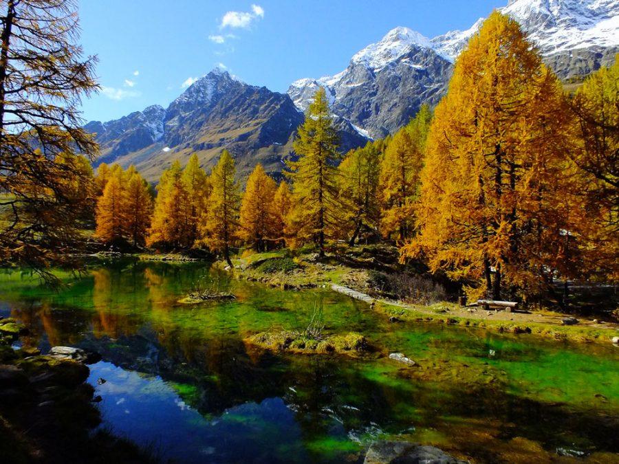 L'Italia è un paese meraviglioso che ha molto da offrire a livello turistico sia da un punto di vista archittettonico, che da un punto di vista paesaggistico. Ci sono infatti dei luoghi che sembrano usciti da fantastiche cartoline, posti che tolgono il fiato per la bellezza che esprimono. Tra questi sicuramente i laghi alpini riempiono di gioia e di meraviglia gli occhi di chi osserva. Sembra di trovarsi di fronte a qualcosa di incontaminato dove cielo e terra si rispecchiano, l'aria è purissima e tutto viene abbracciato da un silenzio ristoratore per lo spirito. I laghi alpini si suddividono in due tipologie: Artificiali Naturali Andiamo a scoprire insieme quali sono quelli da vedere assolutamente! Laghi alpini: lago del Brocan - Cuneo Il lago del Brocan è un lago alpino di origine naturale situato in provincia di Cuneo nel versante delle Alpi Marittime. Precisamente è ubicato nel vallone della Rovina a valle rispetto l'altura dell'Argentera che misura ben 3297 metri. La cornice fantastica che fa da sfondo è costituita dalle Alpi Marittime: un paesaggio incantevole animato da stambecchi, camosci, marmotte e aquile. Per arrivare al lago alpino c'è un percorso da un vecchio sentiero che serve la vicina diga: la percorrenza è circa di due ore. Laghi alpini: lago del Miage - Aosta Il lago del Miage è davvero unico nel suo genere, in quanto non è contornato da rocce e foreste, ma dai ghiacci: uno spettacolo sublime. Le pareti cristalline si devono alla vicinanza con il ghiacciaio Miage che arriva giù dalle sommità del Monte Bianco. Per giungere a contemplare questa rara perla c'è il sentiero che attraversa la Val Veny fino a La Visaille, per poi proseguire verso il lago Combal: una traversata di circa 2 km. Laghi alpini: lago di Place-Moulin - Aosta Restando sempre in Valle d'Aosta troviamo il lago alpino di Place Moulin di origine artificiale. Si trova molto in alto, a ben 1968 metri di altezza, e si può considerare come uno dei più grandi della regione. La partenza pe