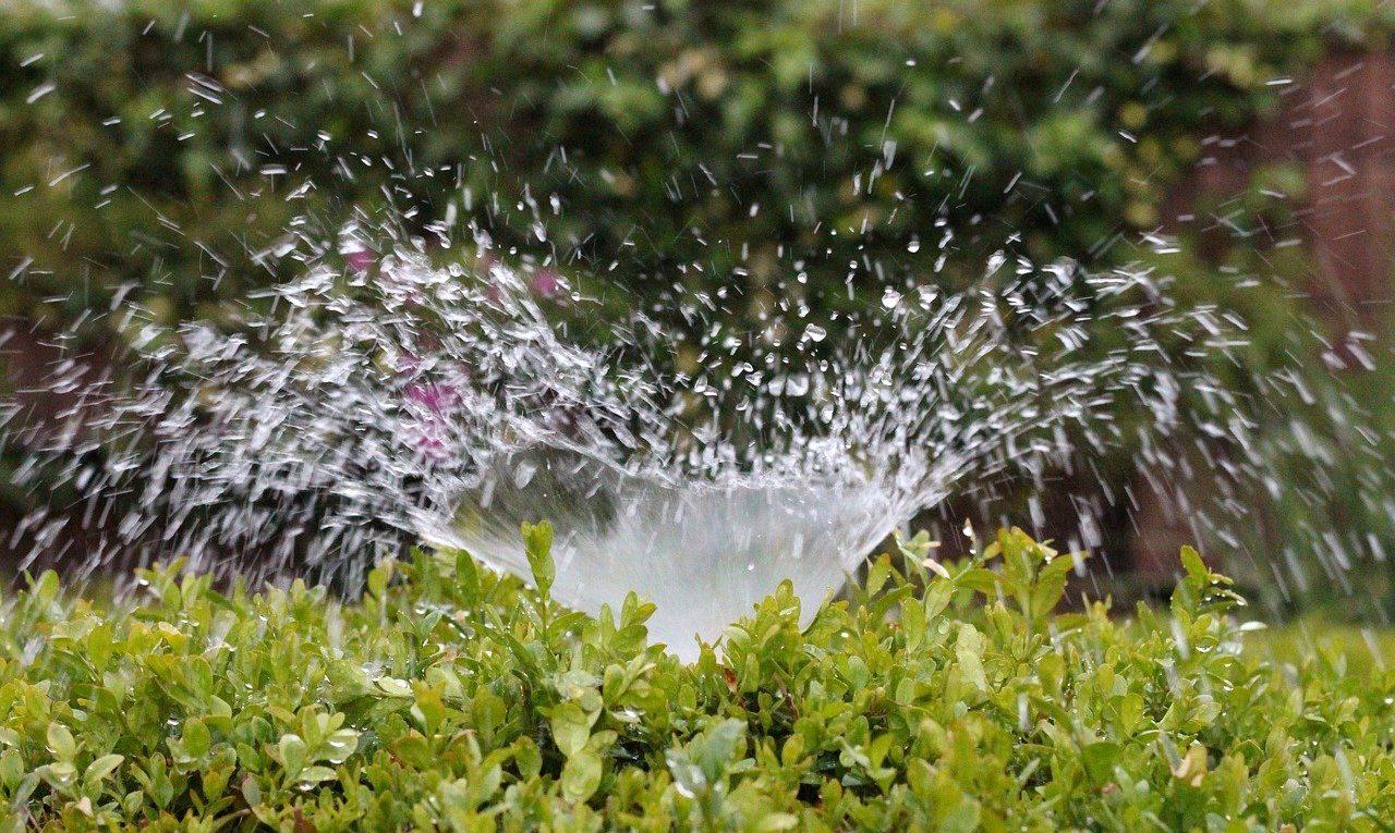 Irrigazioni da giardino, qual è la più adatta