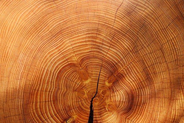 Produzione lame a nastro per legno tutto ciò che c'è da sapere